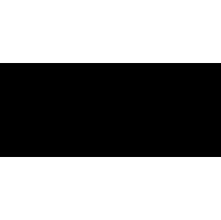 Natini logo